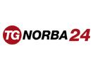 tg_norba24