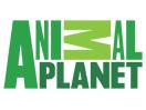 animal_planet_us