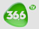 366-tv-ua