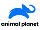 animal-planet-us
